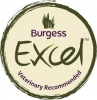 Burgess Excell